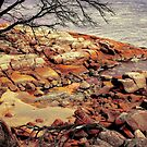 Bay Of Fires 7 by wallarooimages
