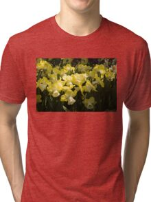 Sunny Daffodil Garden - Enjoying the Beauty of Spring Tri-blend T-Shirt