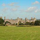 CAERNARFON Castle by AnnDixon