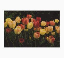 Multicolored Tulips - Enjoying the Beauty of Spring Baby Tee