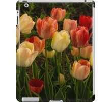 Multicolored Tulips - Enjoying the Beauty of Spring iPad Case/Skin