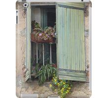 Window boxes iPad Case/Skin