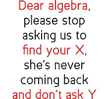 Dear Algebra Photographic Print