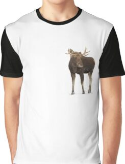 Moose in winter Graphic T-Shirt