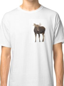 Moose in winter Classic T-Shirt