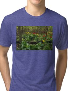 Bright Yellow and Red Tulips in the Forest - Enjoying the Beauty of Spring Tri-blend T-Shirt
