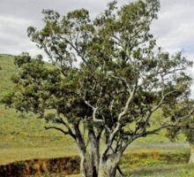 Country Fields, South Australia Sticker