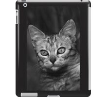 "Chat - Cat "" Peluche "" 03 (c)(h) ) by Olao-Olavia / Okaio Créations 300mm f.2.8 canon eos 5 1989  iPad Case/Skin"