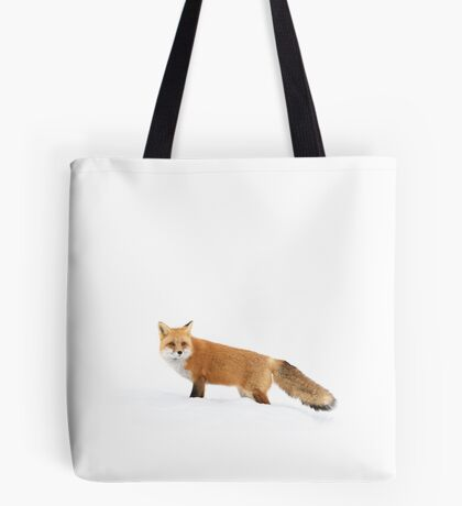 Red fox in snow - Algonquin Park Tote Bag