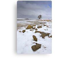 Lochindorb - Winter's Shoreline Canvas Print