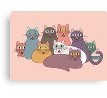 NINE CATS WITH NINE LIVES = ? Canvas Print