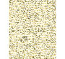 Gold Dashery Photographic Print