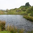 Fairy Glen on The Isle of Skye by Sue Robinson