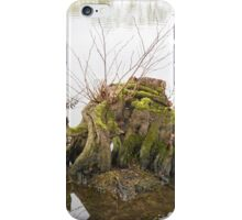 Lonely Log in the water iPhone Case/Skin