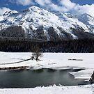 Lake St.Moritz  by annalisa bianchetti