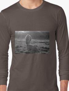 Grazing Pony Long Sleeve T-Shirt