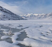 Frozen Lake with mountain background by Alan Mitchell
