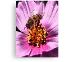 Collecting For The Hive Canvas Print