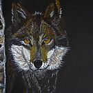 Dark Wolf by Linda Sparks