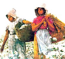 The Cotton Pickers by 2mdesigns