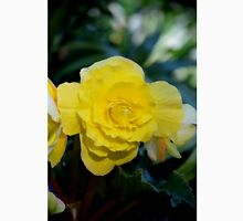 Yellow Begonia Blooming, #flower, #yellow, #macro, #redbubble,  Classic T-Shirt