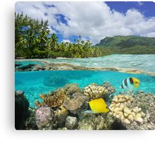 Above and below surface lagoon French Polynesia Metal Print