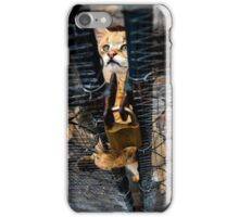 Wild cat iPhone Case/Skin