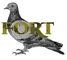 Fort Pigeon by ProjectMayhem