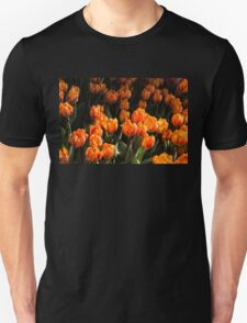Flame Colored Tulips - Enjoying the Beauty of Spring T-Shirt