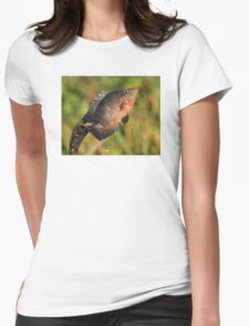 Anhinga Displaying Meal Womens Fitted T-Shirt