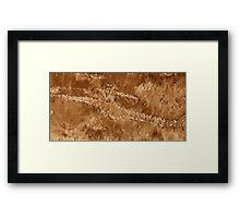 Mars Valles Marineris - Viking / Nasa Images  Framed Print