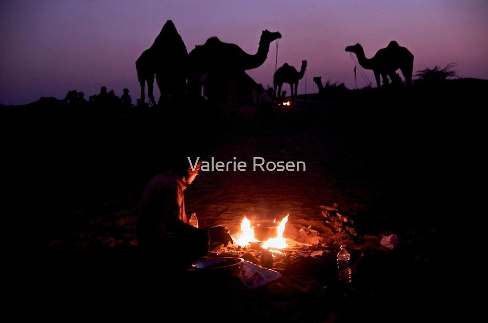 Camel Sunset by Valerie Rosen