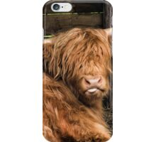 Honey the Hairy Coo iPhone Case/Skin
