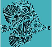 Fish Bones Photographic Print