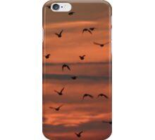 Flock away iPhone Case/Skin
