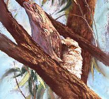 'Tawnies' by Lynda Robinson
