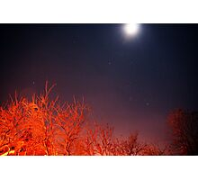 Starfield Photographic Print