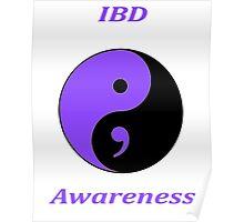 IBD Awareness Semicolon Poster
