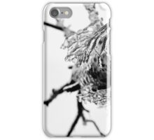 Frozen in time. iPhone Case/Skin