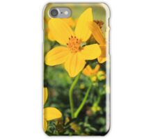 Yellow Wildflowers in a Field iPhone Case/Skin