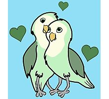 Valentine's Day Green Love Bird with Hearts Photographic Print
