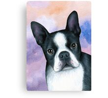 Dog 128 Boston Terrier Canvas Print