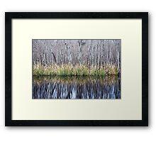 Swamp Reflection Framed Print