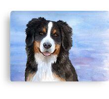 Dog 125 Bernese Mountain Canvas Print