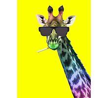 Mr. Giraffe Photographic Print