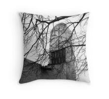 Homage to Le Corbusier  Throw Pillow