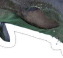 Dolfin Sticker