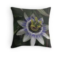 Delicate and Beautiful Passiflora Flower Throw Pillow