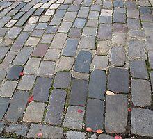 Cobblestones  by Sue Robinson