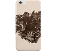 Plant Form 76 iPhone Case/Skin